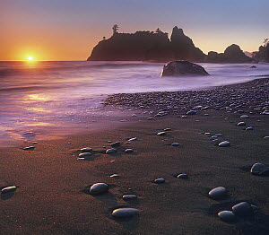 Ruby Beach, Olympic National Park, Washington  -  Tim Fitzharris