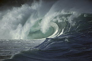 Breaking Waves, Hawaii  -  Bob Barbour
