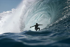 Surfer rides wave, Pipeline, Oahu, Hawaii  -  Bob Barbour