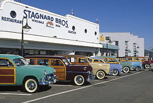 Woodies on the warf, Santa Cruz, California  -  Bob Barbour