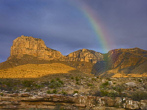 Rainbow near El Capitan, Guadalupe Mountains National Park, Texas  -  Tim Fitzharris