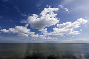 Ocean and clouds, Texel Island, North Sea, Netherlands  -  Duncan Usher