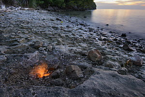 Smokeless fires dance where natural gas seeps from cracks in limestone rocks, Tanjung Api National Park, Ampana, Indonesia  -  Chien Lee