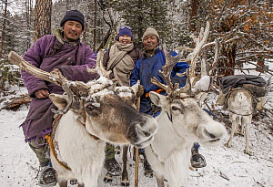 Caribou (Rangifer tarandus) and Tsataan reindeer herders in winter camp, Hunkher Mountains, northern Mongolia - Colin Monteath