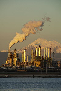 Oil refinery with Mount Baker behind, seen from Fidalgo Bay, Anacortes, Washington - Kevin Schafer