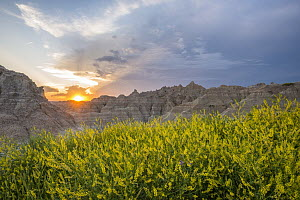 Eroded buttes at sunset, Badlands National Park, South Dakota  -  Sean Crane