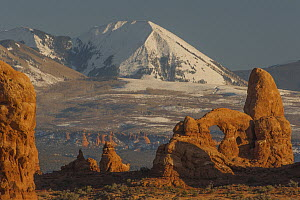 Turret Arch and La Sal Mountains, Arches National Park, Utah  -  Jeff Foott