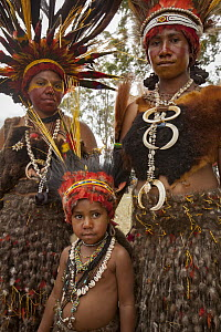 Women and girl in ritual make-up and traditional clothing during a sing-sing, Goroka Show, Goroka, Eastern Highlands, Papua New Guinea  -  Colin Monteath/ Hedgehog House