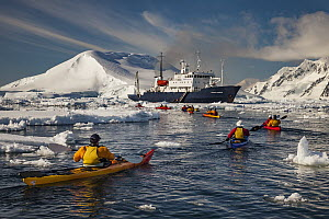 Kayakers paddling back to cruise ship Polar Pioneer, Lemaire Channel, Antarctic Peninsula, Antarctica - Colin Monteath/ Hedgehog House