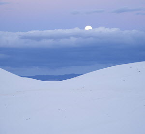 Moon over sand dune, White Sands National Park, New Mexico - Tim Fitzharris