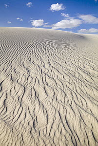 Ripples on white gypsum sand dunes, White Sands National Monument, New Mexico - Yva Momatiuk & John Eastcott