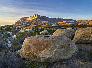 Mountain at sunset, El Capitan, Guadalupe Mountains National Park, Texas  -  Tim Fitzharris