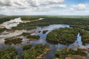 River in rainforest, Essequibo River, Rupununi, Guyana  -  Pete Oxford