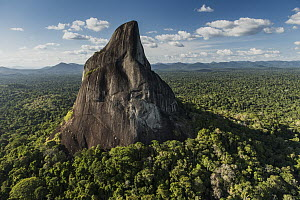 Bottle Mountain rising out of rainforest, Rupununi, Guyana - Pete Oxford