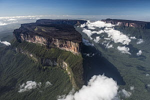 Clouds between tepuis, Mount Roraima, Pacaraima Mountains, Guyana - Pete Oxford