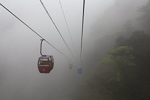 Gondolas in fog, Shunan Zhuhai National Park, Sichuan, China - Ingo Arndt