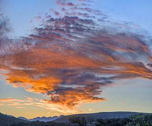 Clouds at sunset, Black Canyon of the Gunnison National Park, Colorado  -  Tim Fitzharris