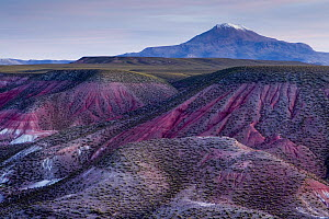 Clay rock formations and volcano, Valley of the Moon, Abra Granada, Andes, northwestern Argentina  -  Sebastian Kennerknecht
