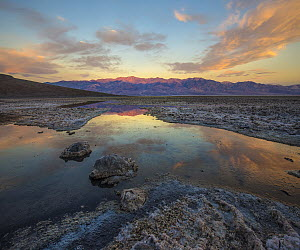 Salt pan with water, Badwater, Panamint Range, Death Valley National Park, California  -  Tim Fitzharris