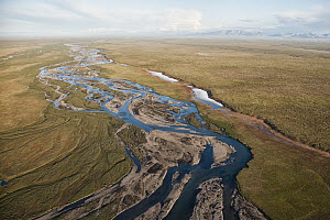 Aerial of coastal plain, which is the calving and nursing grounds of Porcupine caribou herd and is threatened by potential oil and gas development, Arctic National Wildlife Refuge, Alaska - Peter Mather
