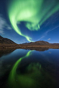Northern lights reflecting in pond, Ogilvie Mountains, northern Yukon, Canada  -  Peter Mather