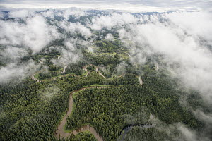 Winding river in boreal forest, Yukon-Charley Rivers National Preserve, Alaska  -  Peter Mather