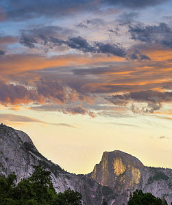 Sunrise over Half Dome, Yosemite Valley, Yosemite National Park, California  -  Tim Fitzharris