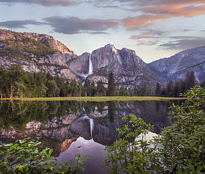 Yosemite Falls reflected in flooded Cook's Meadow, Yosemite Valley, Yosemite National Park, California - Tim Fitzharris
