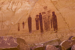 Great Gallery pictograph panel in the Barrier Canyon style, Horseshoe Canyon, Canyonlands National Park, Utah  -  Jeff Foott