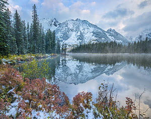 Grand Tetons from String Lake, Grand Teton National Park, Wyoming  -  Tim Fitzharris