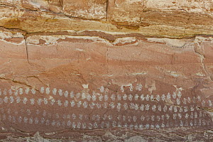 Pictographs, Hundred Hands Panel, Grand Staircase-Escalante National Monument, Utah  -  Jeff Foott
