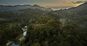 Forest-covered hills and river, Taironaka Lodge, Colombia - Paul Bertner