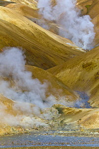 Rhyolite mountains and geothermal vents, Kerlingarfjoll, Iceland - Yva Momatiuk & John Eastcott