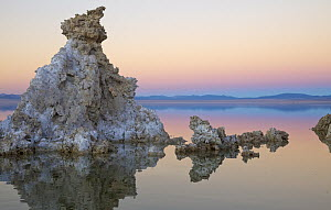 Calcium tufa formations, Mono Lake, California - Yva Momatiuk & John Eastcott