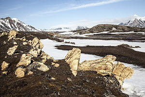 Rocks and ice near mountains in tundra, Eidembukta, Spitsbergen, Svalbard, Norway - Heike Odermatt