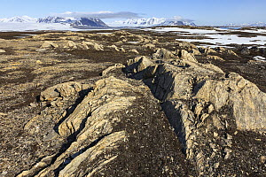Rock formations and mountains, Eidembukta, Spitsbergen, Svalbard, Norway - Heike Odermatt