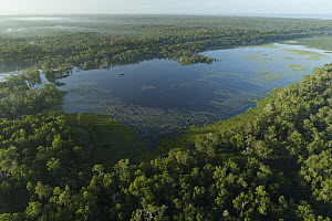 Lake in rainforest, Wasur National Park, Papua, Indonesia  -  Chien Lee