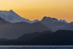 Coastal mountains at sunset, Glacier Bay National Park, Alaska  -  Andrew Peacock