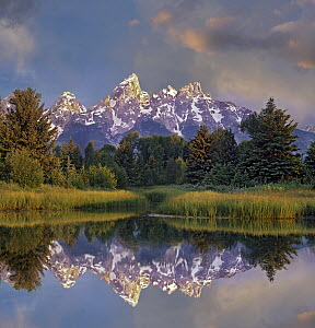 Grand Tetons from Schwabacher Landing, Grand Teton National Park, Wyoming  -  Tim Fitzharris