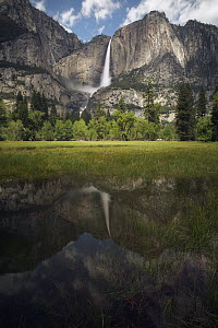 Waterfall reflected in flooded meadow, Yosemite Falls, Yosemite National Park, California  -  Chase Dekker