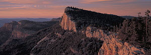 Mountains of Sierra del Carmen tower 5,000 feet over the Chihuahuan Desert floor, Sierra Madre Range, Mexico  -  Patricio Robles Gil