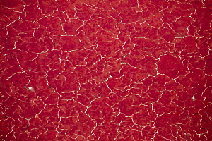 Red algae and salt formations, Lake Natron, Tanzania - Paul Souders/ Worldfoto