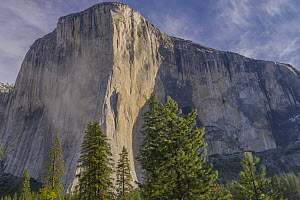 El Capitan, Yosemite National Park, California - Jeff Foott