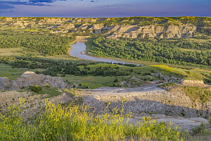 Little Missouri River, Theodore Roosevelt National Park, North Dakota  -  Jeff Foott