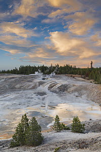 Fumaroles, Porcelain Basin, Norris Geyser Basin, Yellowstone National Park, Wyoming - Jeff Foott