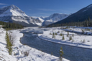 Mountains and river after autumn snowfall, Sunwapta River, Jasper National Park, Alberta, Canada  -  Jeff Foott