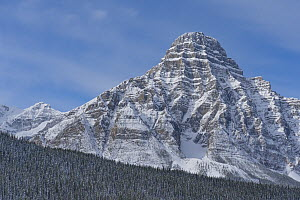 Mount Chephren, Banff National Park, Alberta, Canada  -  Jeff Foott