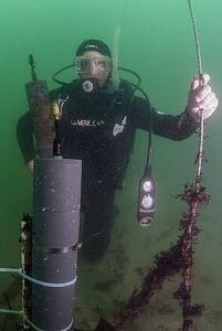 White Seabass (Atractoscion nobilis) biologist changing LARS acoustic detector to detect fish spawning sounds, San Diego, California - Ralph Pace