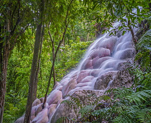 Bua Tong Waterfalls, also known as Sticky Waterfalls due to mineral deposits, Thailand - Tim Fitzharris