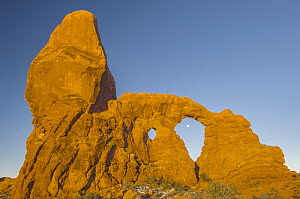 Full moon and Turret Arch, Windows Section, Arches National Park, Utah  -  Jeff Foott